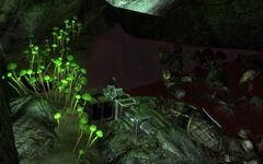 Deathclaw Sanctuary Vengeance
