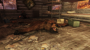 FO76 Bear rug in a creepy cabin