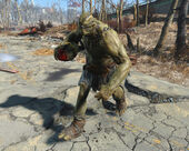 FO4 super mutant suicider.jpg