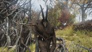 FO76 Cultist Totems (Point Pleasant) (3)