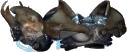 Advanced power armor (Fallout Tactics)