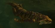 Swimminggecko1