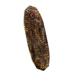 Wild corn.png