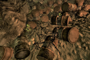 FNV Techatticup mine skeletons