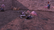 FO76 191020 Flamingo violence