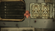 FO76 Scorched bloatfly.png