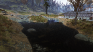 FO76 Flatwoods River 5