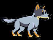 FOS Dog3