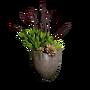 Atx camp floordecor succulentset largepot01 l.webp