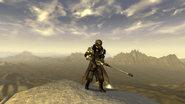 FNV Courier in the mountains near Jacobstown 3