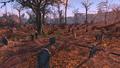 FO4 Wildwood cemetery 2