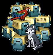 FoS Pet carrier x15