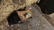 FO4 Astoundingly Awesome Tales in Boston Mayoral Shelter