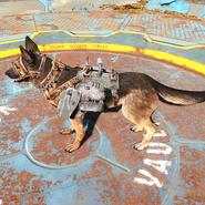 FO4 Броня для собаки1