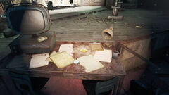 Fo4CC Director's notes.jpg