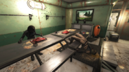 FO76 Food Paste and Dead Enclave Scouts