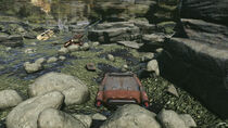 FO76 Point Pleasant (river bottom 2)
