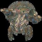 FO76 creature mirelurk razorclaw