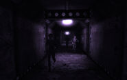 Vault 106 hallucination Amata running