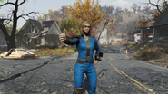 FO76 LoveCats