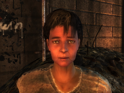 FO3TPMideaNoWrap.png