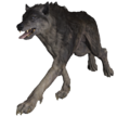 FO76 Grey Wolf.png