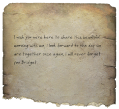 Love letter to Bridget.png
