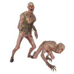 FO76 Creature Feral ghoul.png