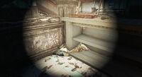 Fallon'sDepartmentStore-Button-Fallout4