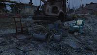 Charleston Landfill Skeletons 01
