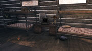 FO76 Middle Mountain Cabins (Pioneer Scout Terminal).jpg