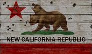 NCR Sign Flag Texture