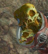 Zetan anatomy (Fallout 4)