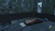 FO4 Old Gullet Sinkhole interior 6