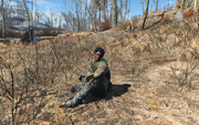 Fo4 Irradiated Woman.png