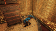 FO76 Palace of the Winding Path (Vault dweller)