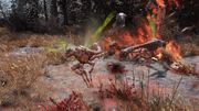 Scorched Stingwing.png