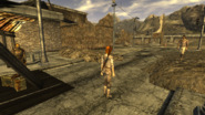 FNV primm citizens on the NCR territory (ev)