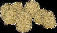 FO76 Brain fungus 1