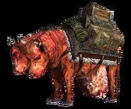 Hoff's and Wolfgang's pack brahmin