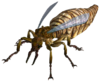 Giant ant queen.png