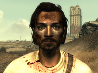 FO3Wasteland doctor1