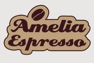 Amelia Espresso Art of FO4