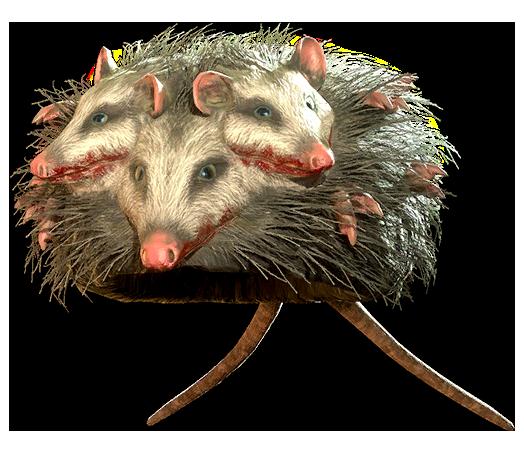 Rad opossum hat