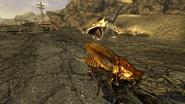 FNV Gecko and Radroach