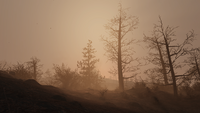 FO76 Ash storm dusk