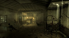 Trappers shack interior.jpg