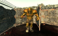 Evergreen Mills Caged Behemoth