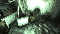 Fo3 Lucky's missiles