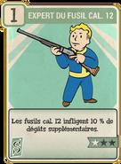 FO76 Expert du fusil cal. 12